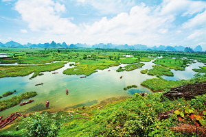 临桂会仙湿地:中国最大岩溶湿地公园