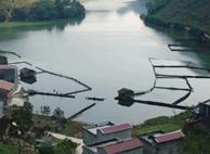 峨里湖乡村旅游度假区