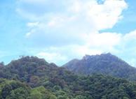 大山原始森林