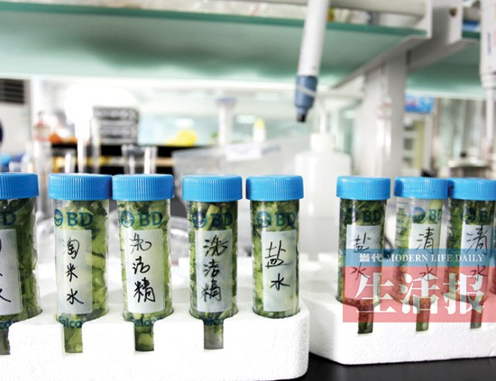 清除蔬菜农药残留 你用清水、淘米水还是洗洁精?