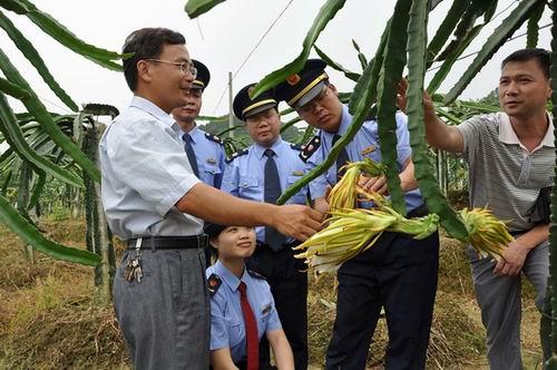 苍梧县工商局抓好特色企业促地方经济发展
