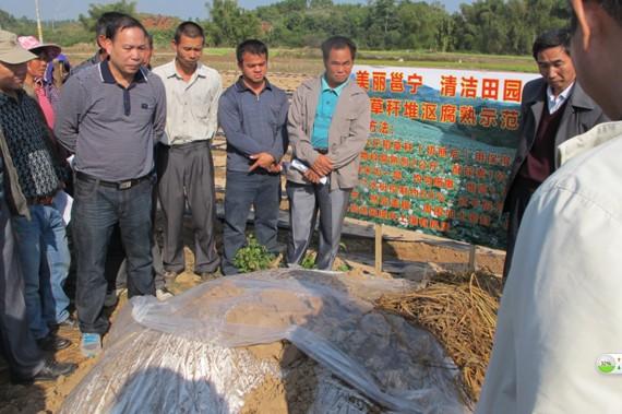 """邕宁区积极推广""""清洁田园""""技术,科学处理农作物秸秆"""