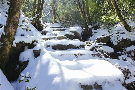 雪落猫儿山