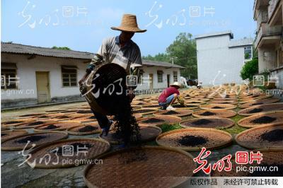 黄姚古镇豆豉香