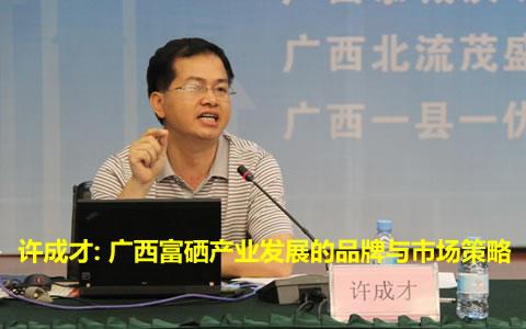 许成才: 广西富硒产业发展的品牌与市场策略