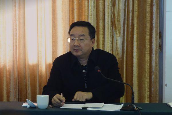 自治区党委常委、政府副主席唐仁健在都安县调研扶贫生态移民工作