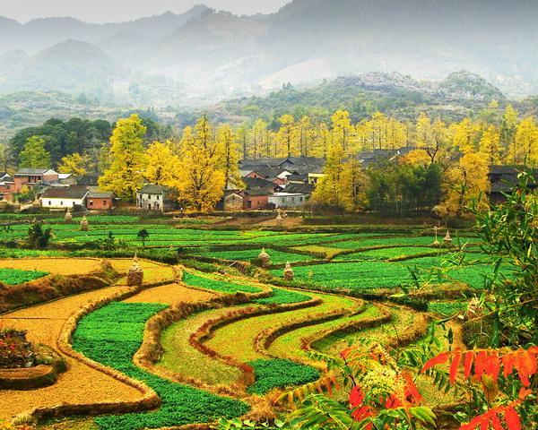 灵川县海洋乡