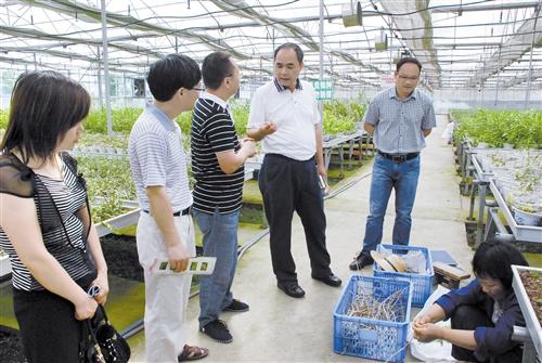 九三学社南宁市委会为县域经济发展献良策