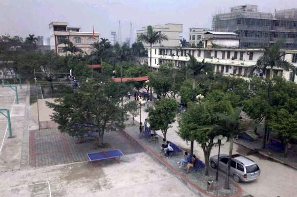 平南县丹竹镇