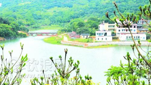 钦北区青塘镇:移民新村风光美