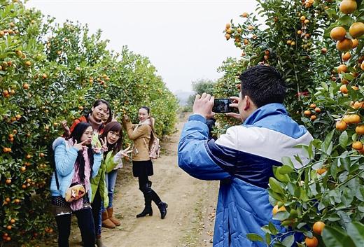 钦州市:宝鸭坪变身花果山