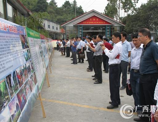 全区扶贫生态移民现场推进会与会人员在观看环江毛南家园展板