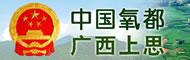 上思县人民政府门户网