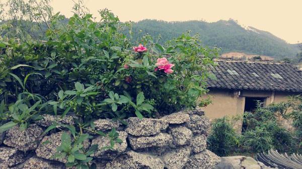 上林清代民居――鼓鸣寨