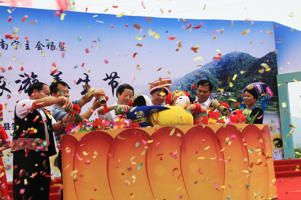 2015上林生态旅游养生节开幕式花絮
