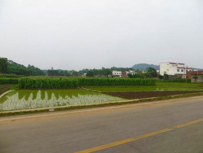 象州县马坪镇