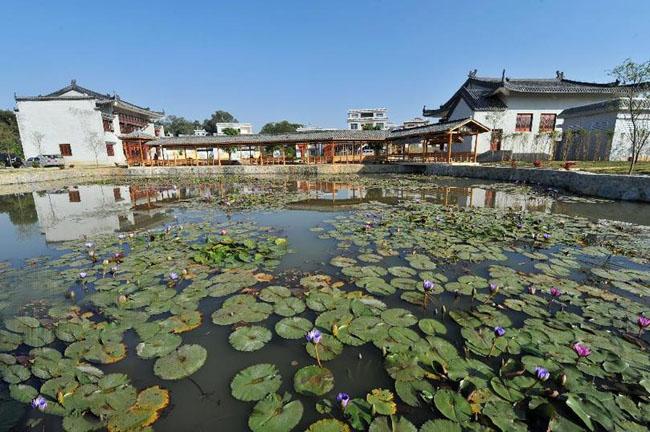 象州县寺村镇