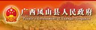 凤山县人民政府