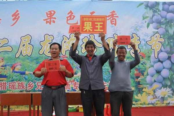 天峨举办第二届龙滩珍珠李节 推进水果品牌建设