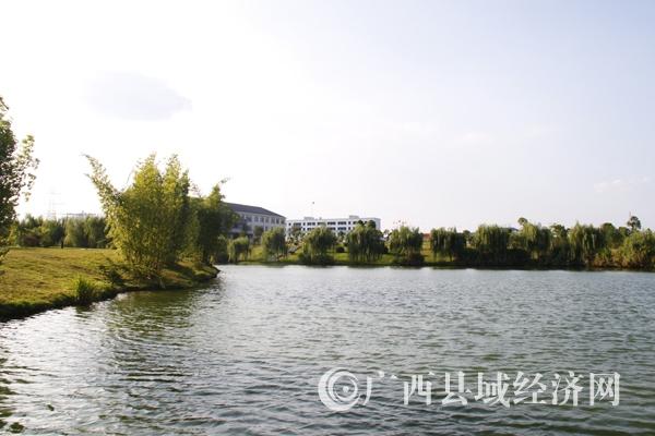 """[富川县]全面推动""""生态循环经济提升年"""" 促进经济稳发展"""