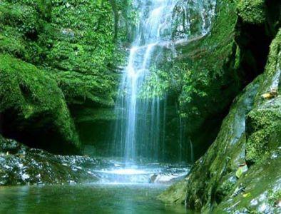 岑王老山自然保护区自然环境优美