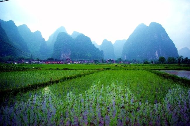 """素有""""小桂林""""之称的钟山县荷塘十里画廊秀丽迷人风光。.jpg"""