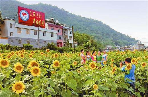 [蒙山县]生态乡村与旅游特色名县建设良性互动