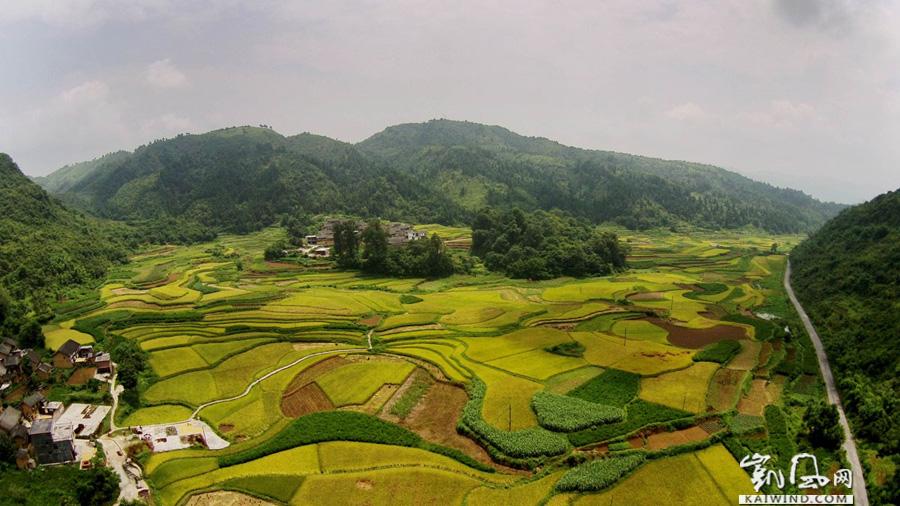 图7:8月10日,在广西柳州市融安县东起乡长丰村航空拍摄的田园风光。(谭凯兴摄)副本