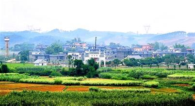横县六景镇