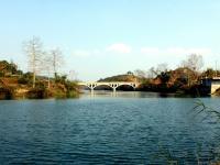 巴马盘阳河