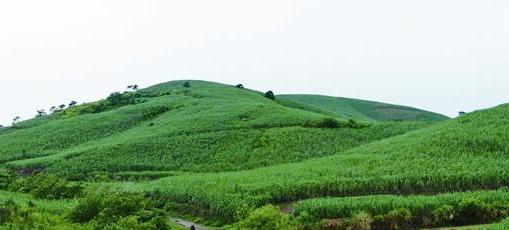 藤县平福乡