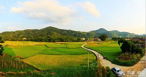钟山县珊瑚镇