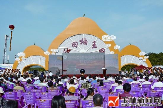 2015年容县沙田柚旅游文化节开幕