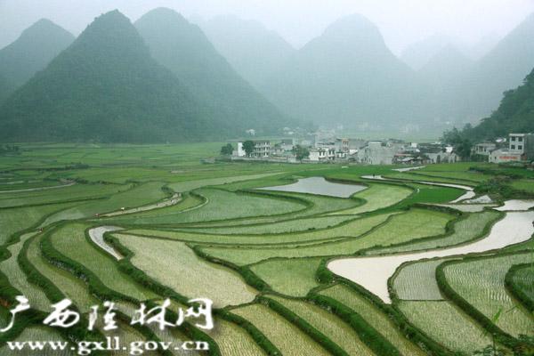 隆林县克长乡