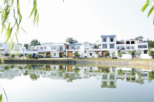 """武宣县推进""""生态乡村""""建设打造美丽家园纪实"""