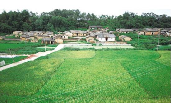 博白旺茂镇的客家古村落.jpg