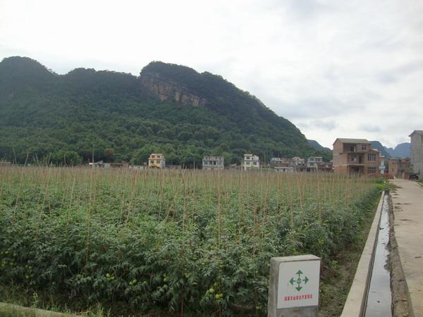 永福县三皇镇