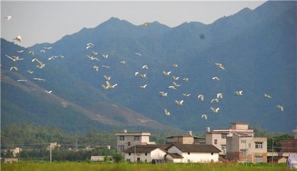 蒙山县文圩镇