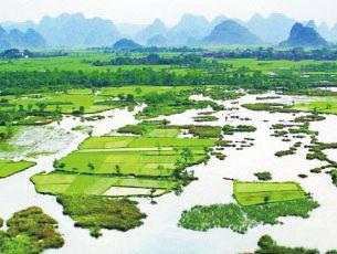 临桂区中庸乡
