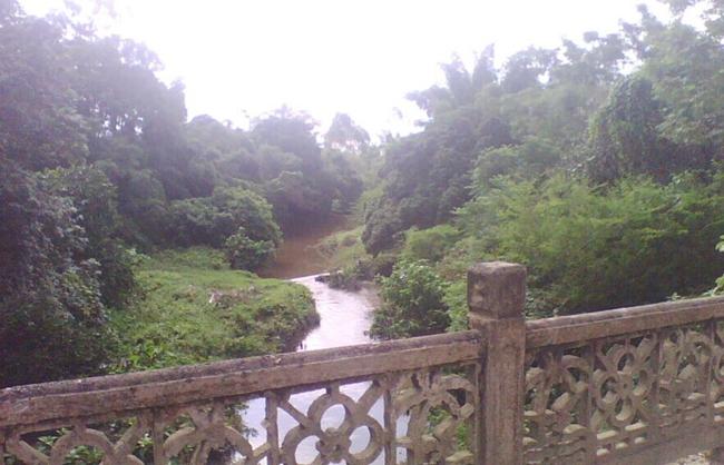 沙陂镇沙陂河.jpg