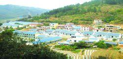 田林县六隆镇