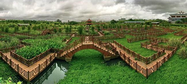 九曲河自然风景区湿地片区