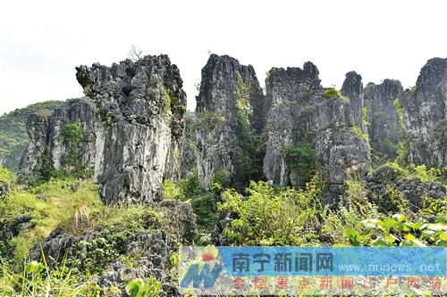 探访南宁旅游处女地:马山上亿年石林城堡巧夺天工