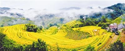 东兰县长江镇