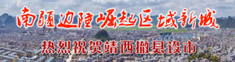 靖西撤县设市:南疆边陲崛起区域新城