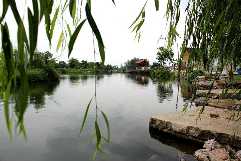 春满柳江―十二五回眸:生态乡村 美丽乡愁