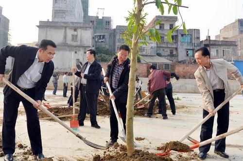 博白县四家领导开展义务植树活动 助力生态乡村建设