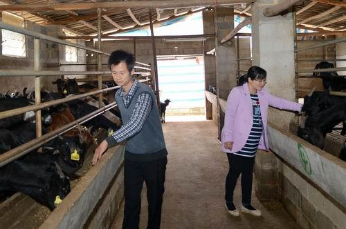 博白新春特写:中国优秀农民工刘入源的一天
