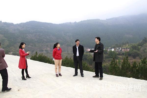 调研组在桂黔(隆林)经济合作产业园考察建设情况.jpg
