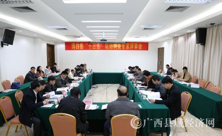 """博白县""""十三五""""规划纲要专家评审会在南宁召开"""